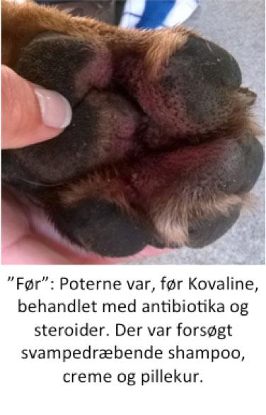 Foto2foerfotopote